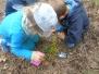 Zajęcia w lesie gr. VI